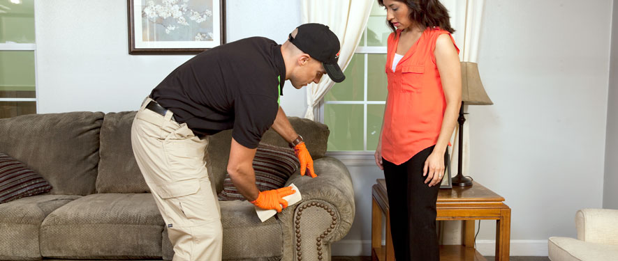 Belton, MO carpet upholstery cleaning